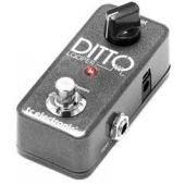 TC-ELECTRONIC DITTO LOOPER